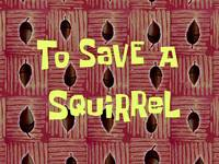 To save a squirrel  -  Le test du survivant